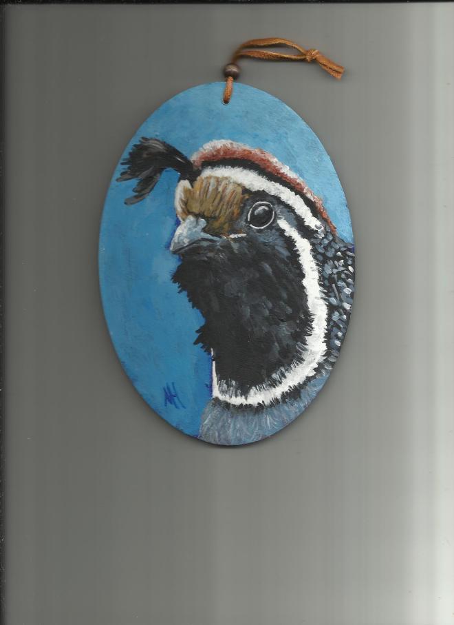 quail boy