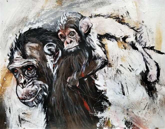 Chimpanzee a1