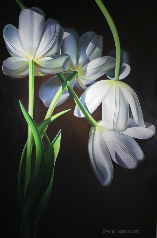 Dyana Hesson Love Came Down, White Tulips 60x40