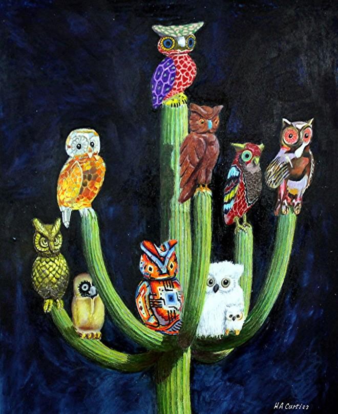 2017a SAGUARO OWLS (dwnsz)