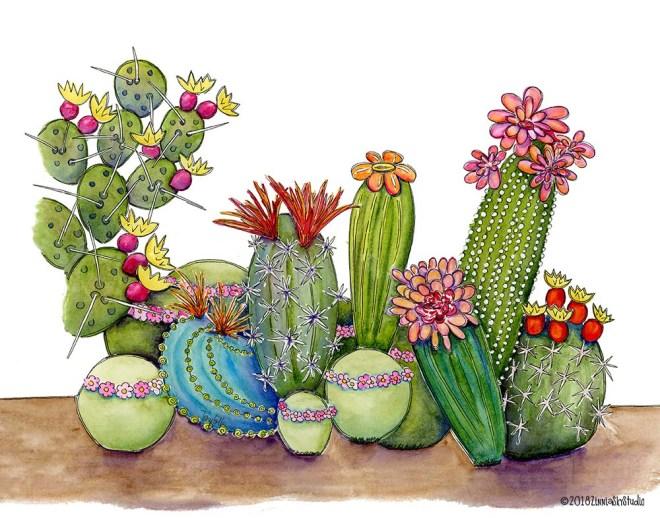 succulent medley (1)